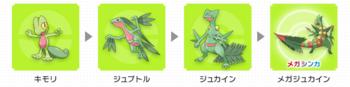 ジュカイン進化過程.png
